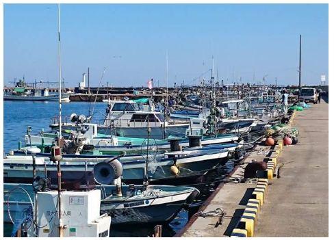 漁港に停まっている漁船