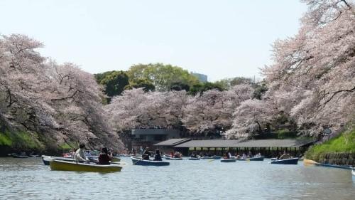 2019年版観光競争力レポート(Travel & Tourism Competitiveness Report 2019)に見る日本の観光競争力と世界の変化