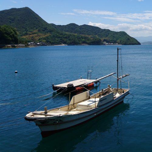 890世帯の島で5人に1人が登録